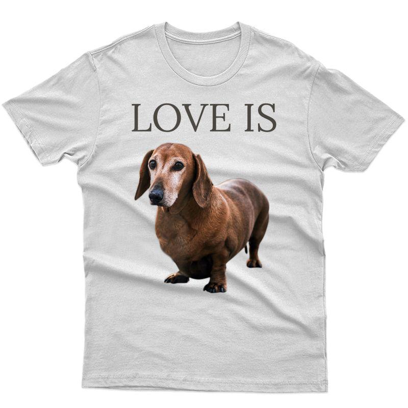 Dachshund Shirt Dog Mom Dad Gift Doxie Tshirt T-shirt